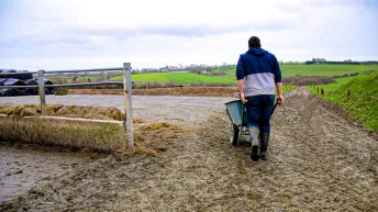 Farm Business Income report shows 'volatility' between sectors – NFU