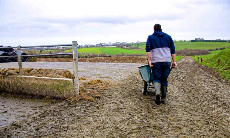 Farm Business Income report shows 'volatility' between sectors – NFU