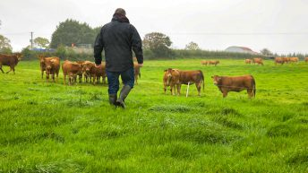RABI Big Farming Survey breaks records with over 15,000 responses