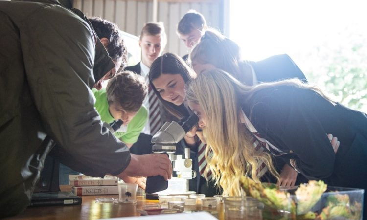 8 ambassadors appointed to support participants at LEAF Open Farm Sunday