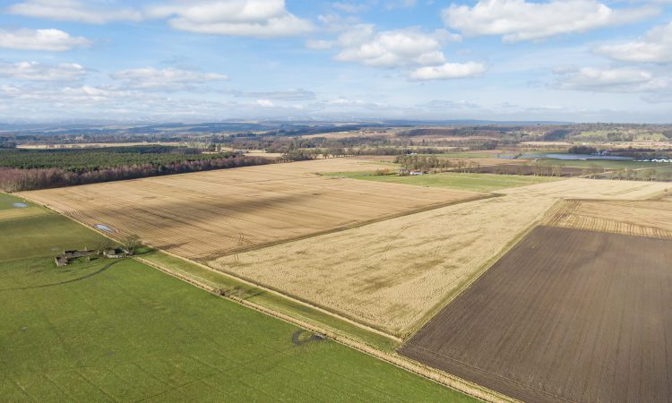 54ha of prime agricultural land appears on the market near Stirling