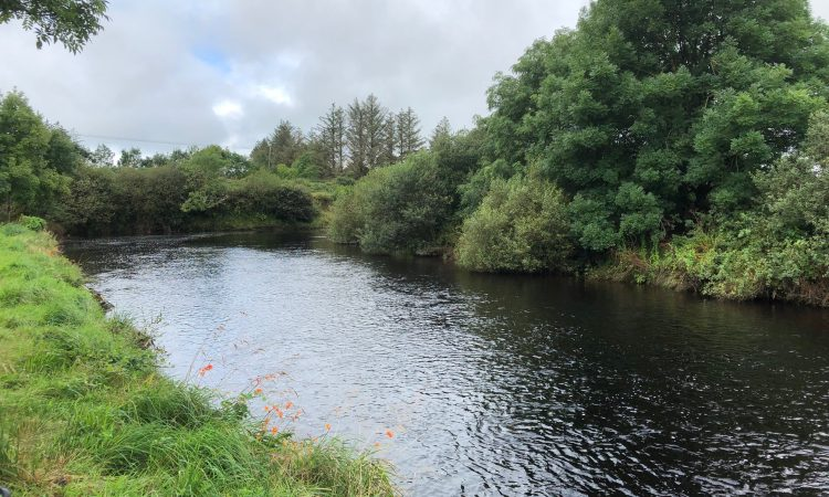 NI's independent Environmental Protection Agency stalled until next mandate