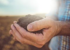 66% of most soils deficient in key nutrients – NRM