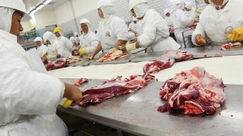 Global mentorship programme launched for women in the meat industry
