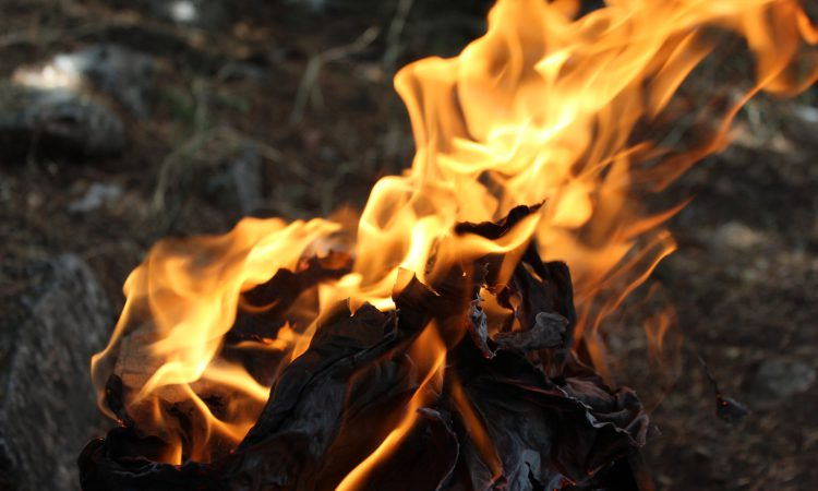 Public urged to take all steps possible to prevent wildfires ahead of lockdown easing