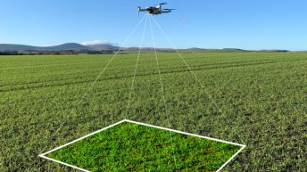 Drone crop scouting app to be demonstrated at Cereals for the first time