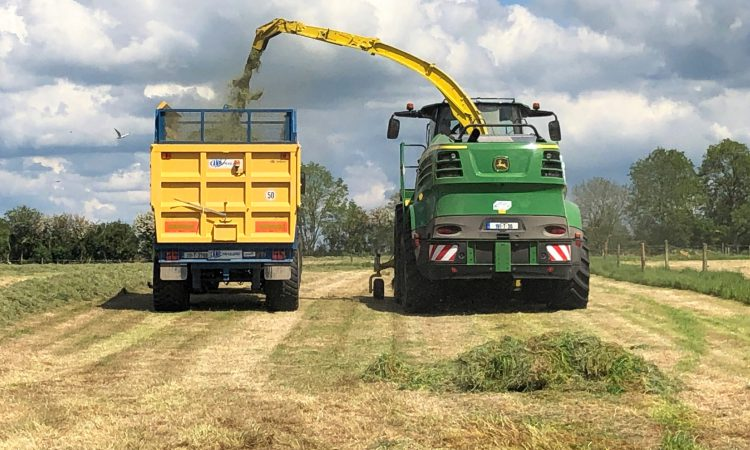 Maximising the quality of first-cut silage
