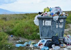 BVA warns the public of the impact litter has on animal health