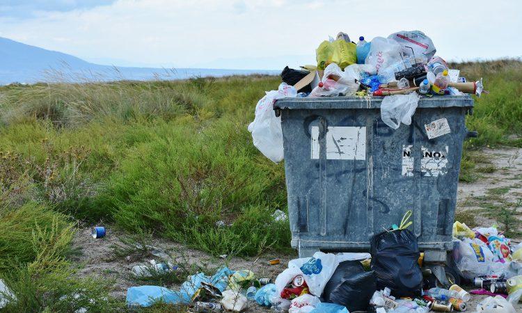 BVA warns the public of the impact litter has on animal health