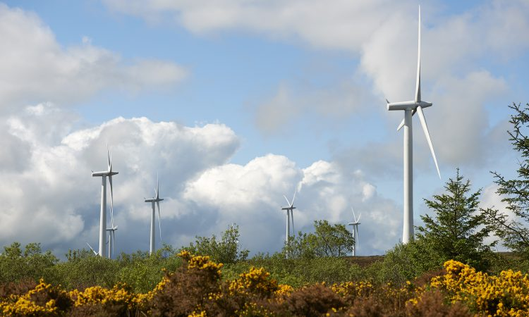 Northern Ireland energy sector to be fully decarbonised by 2050