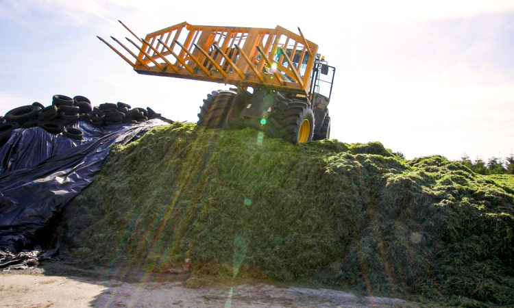 Environmental considerations for silage storage