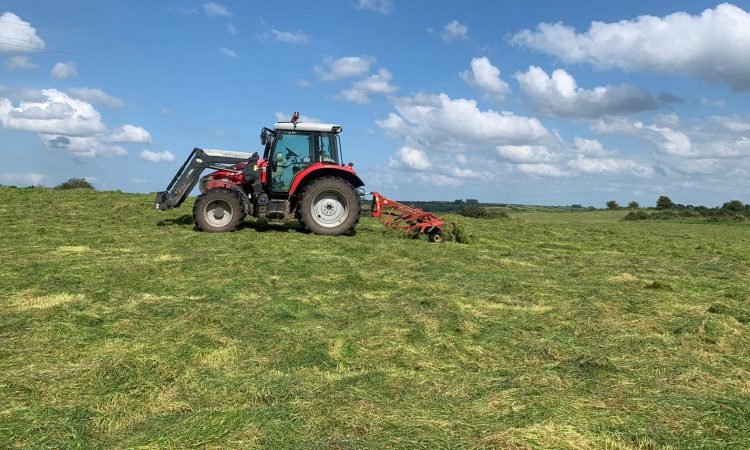 Wilting silage – is it worthwhile?