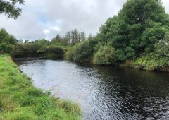 Water pollution trend in NI is 'concerning' – Sugden