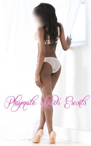 Annalise from Playmate Leeds Escorts