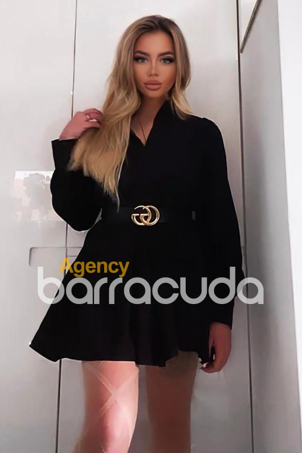 Barbarossa from Agency Barracuda