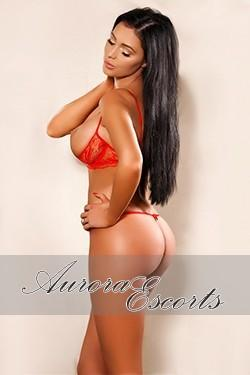 Molly from Dating London Escorts