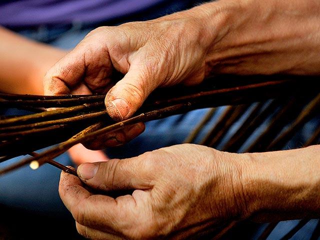 Nene Coppicing Basket Making