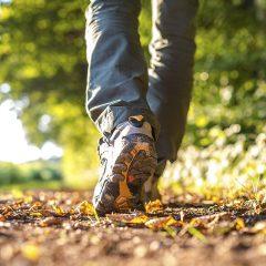 Walk Peterborough List