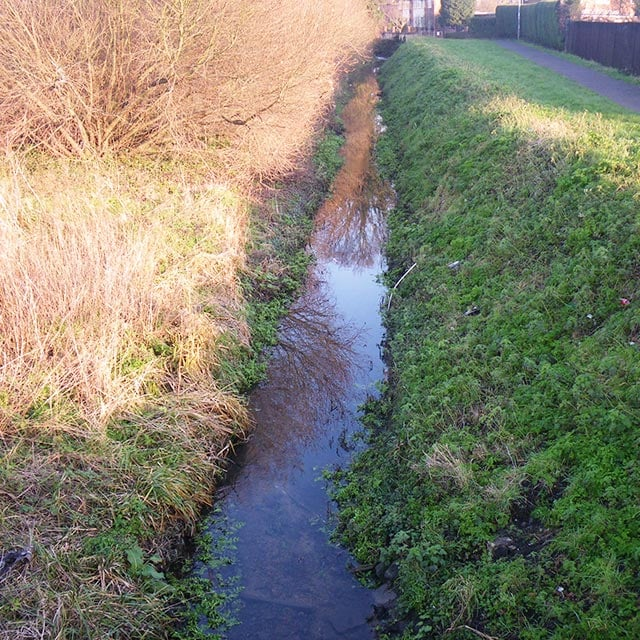 Werrington Brook Dyke List Image