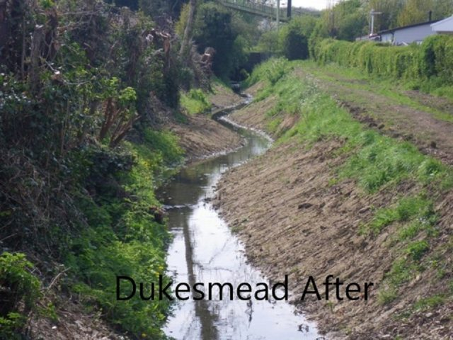 Dukesmead After