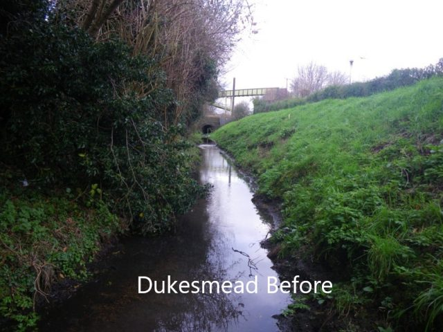 Dukesmead Before