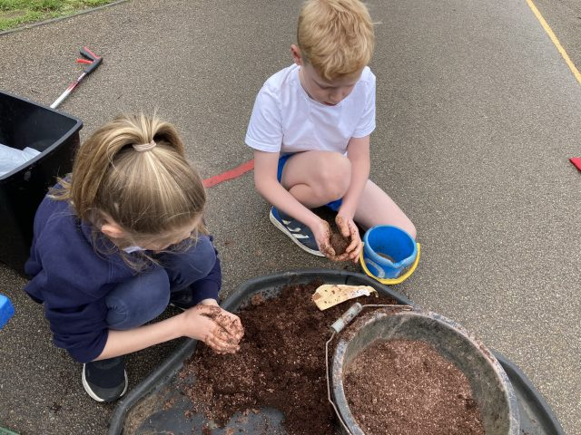 making seed bombs