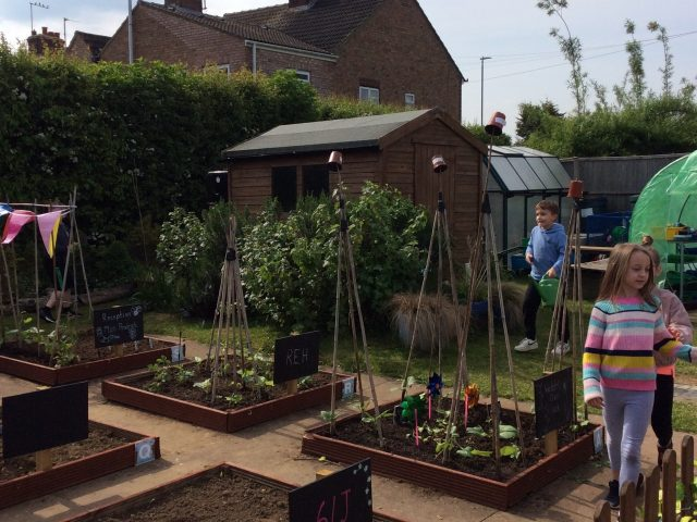 outdoor school garden