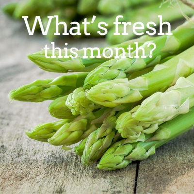 What's Fresh at Chefs Mate in Christchurch