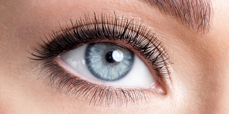 Russian Lashes Course