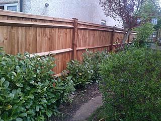 Bearleaf - Residential fencing