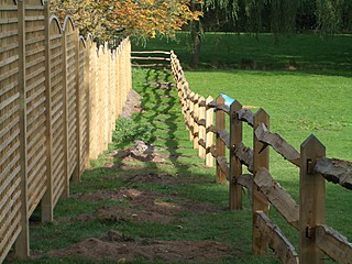 Bearleaf - Fencing