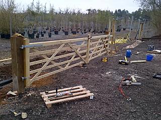 Bearleaf - Fencing Surrey