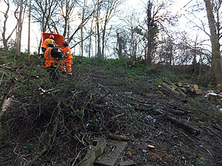 Bearleaf - Industrial vegetation control