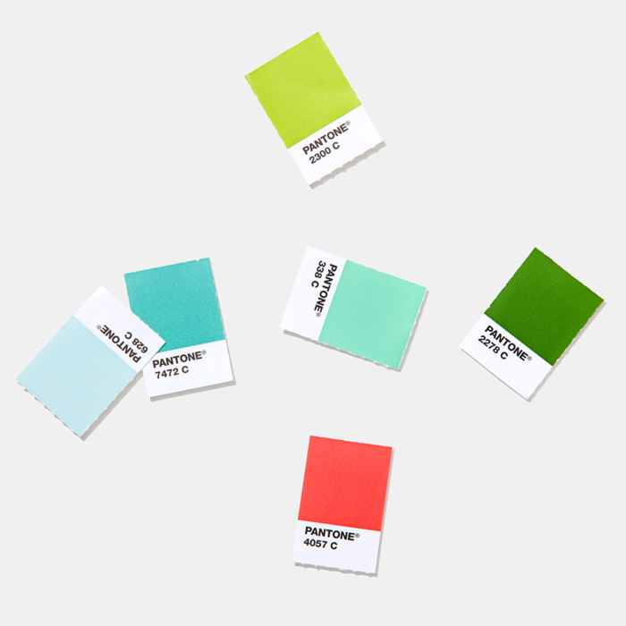 Solid-Chips-coated-chips-PANTONE_1_700x700-1