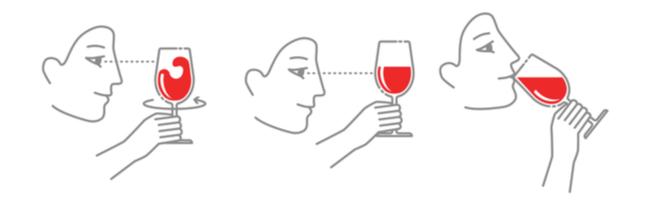 Swirling Wine