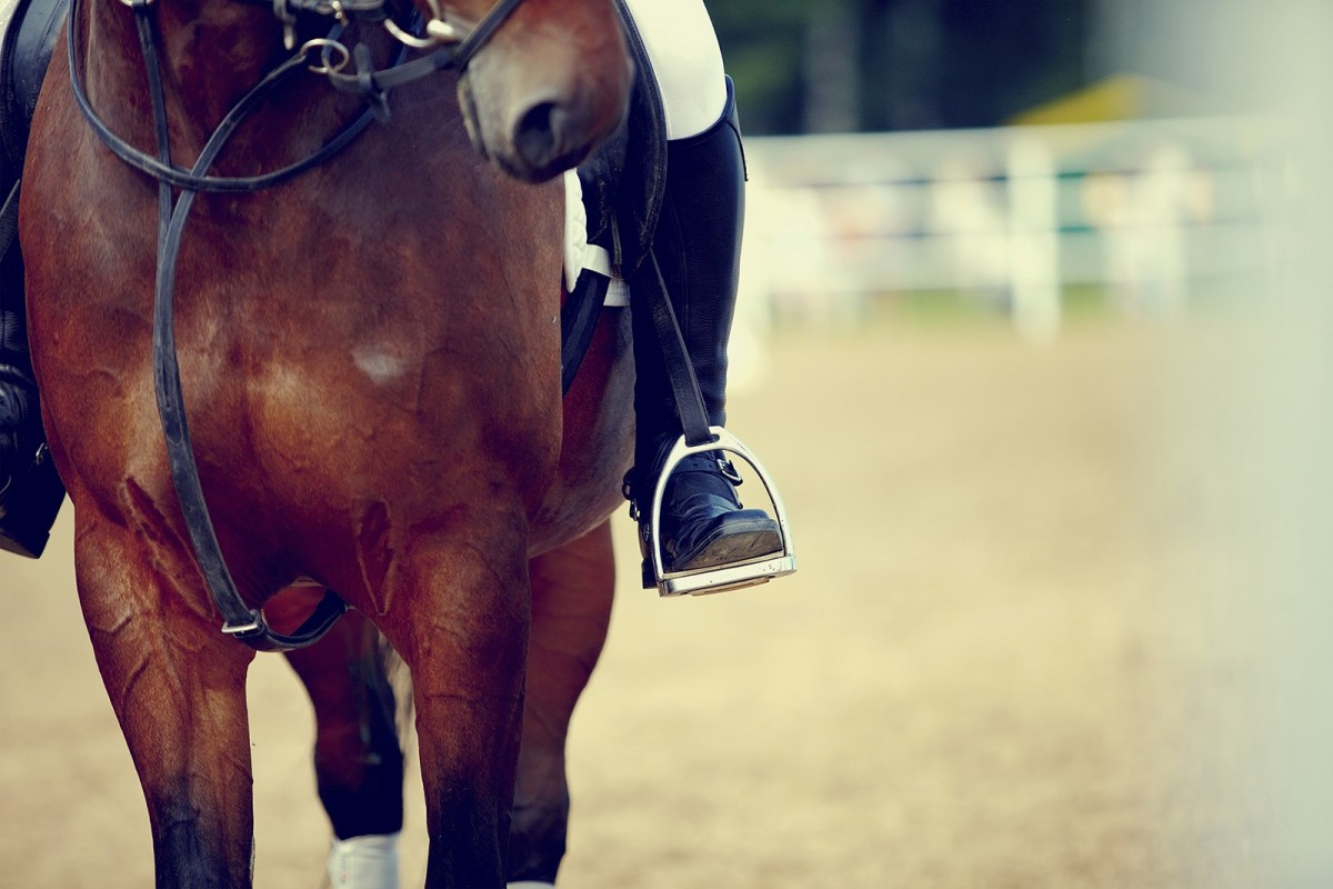 A close up image of a horse rider's boot in the stirrup of a brown horse