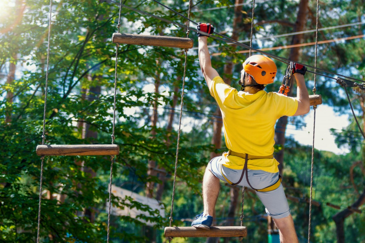 Someone doing treetop obstacles in Go Ape