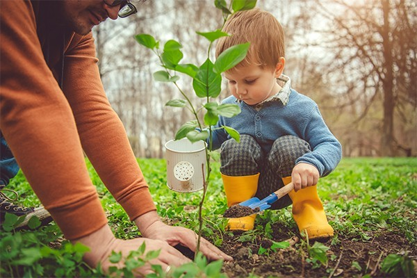 Little boy planting seeds