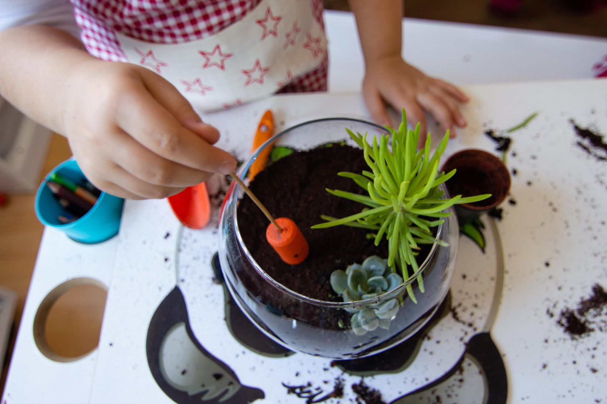 Child building a mini garden in a glass bowl