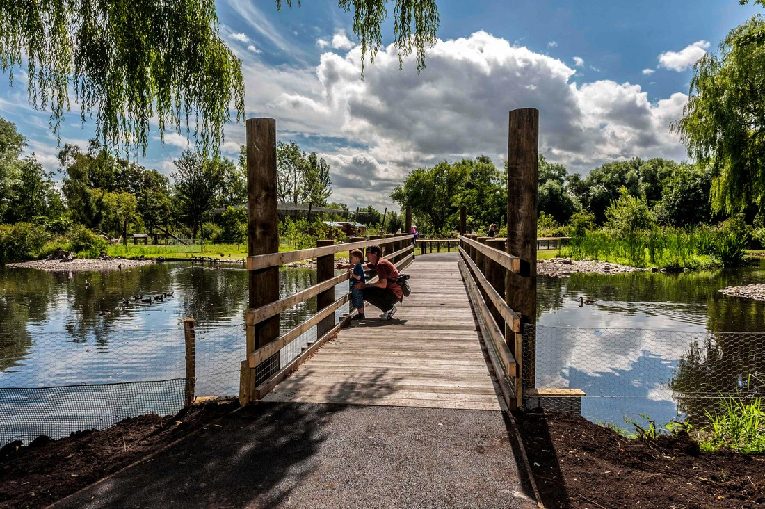 Wildfowl and Wetlands Trust bridge over a lake