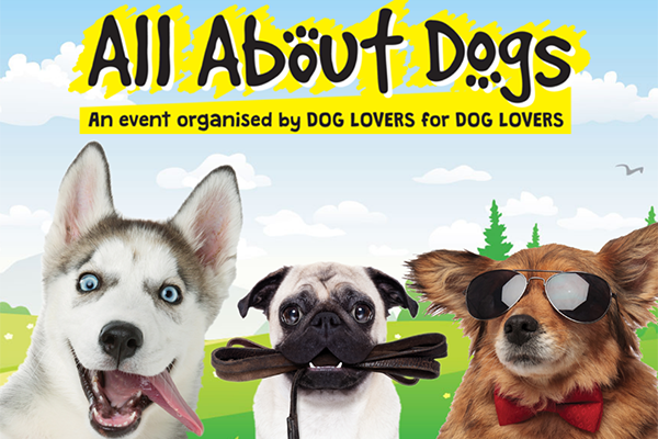 Three dogs on an all about dogs show poster