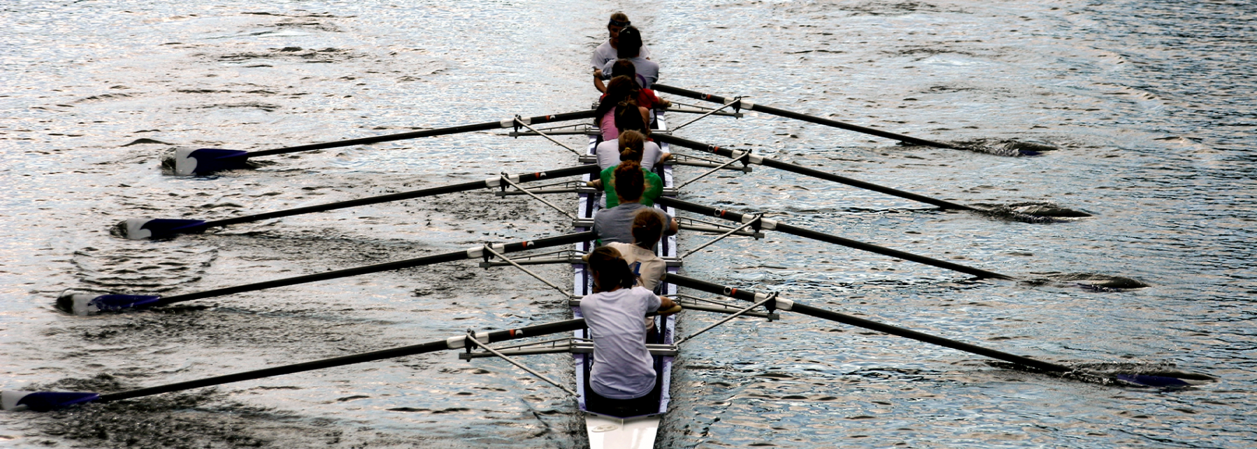 Rowers on a river