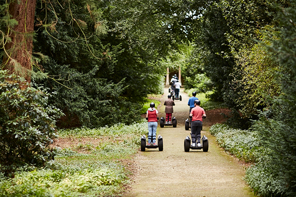 A column of people riding segways through a forest