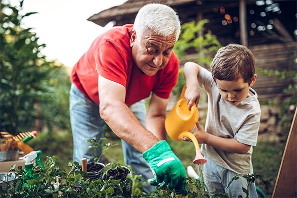 A grandad and grandson gardening