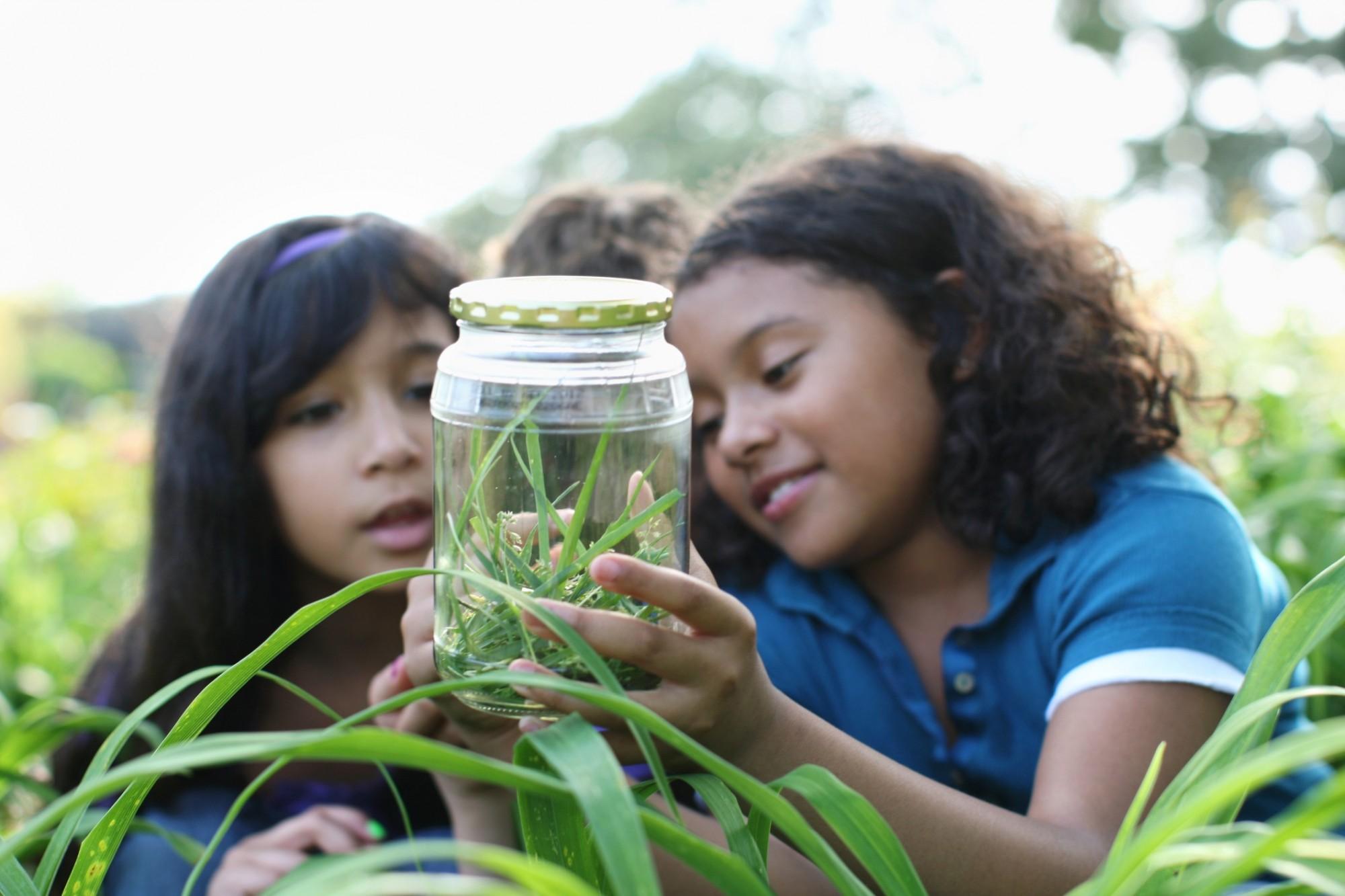 Children bug hunting in a garden