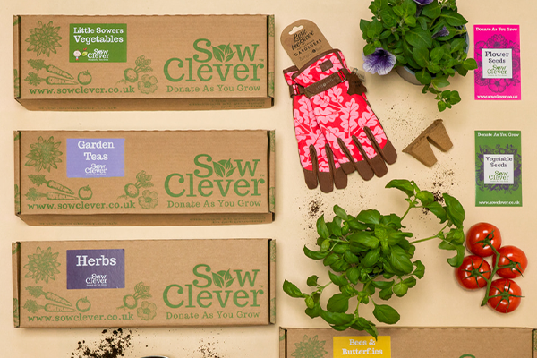 An assortment of Sow Clever kids in cardboard