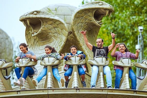 Theme park rides