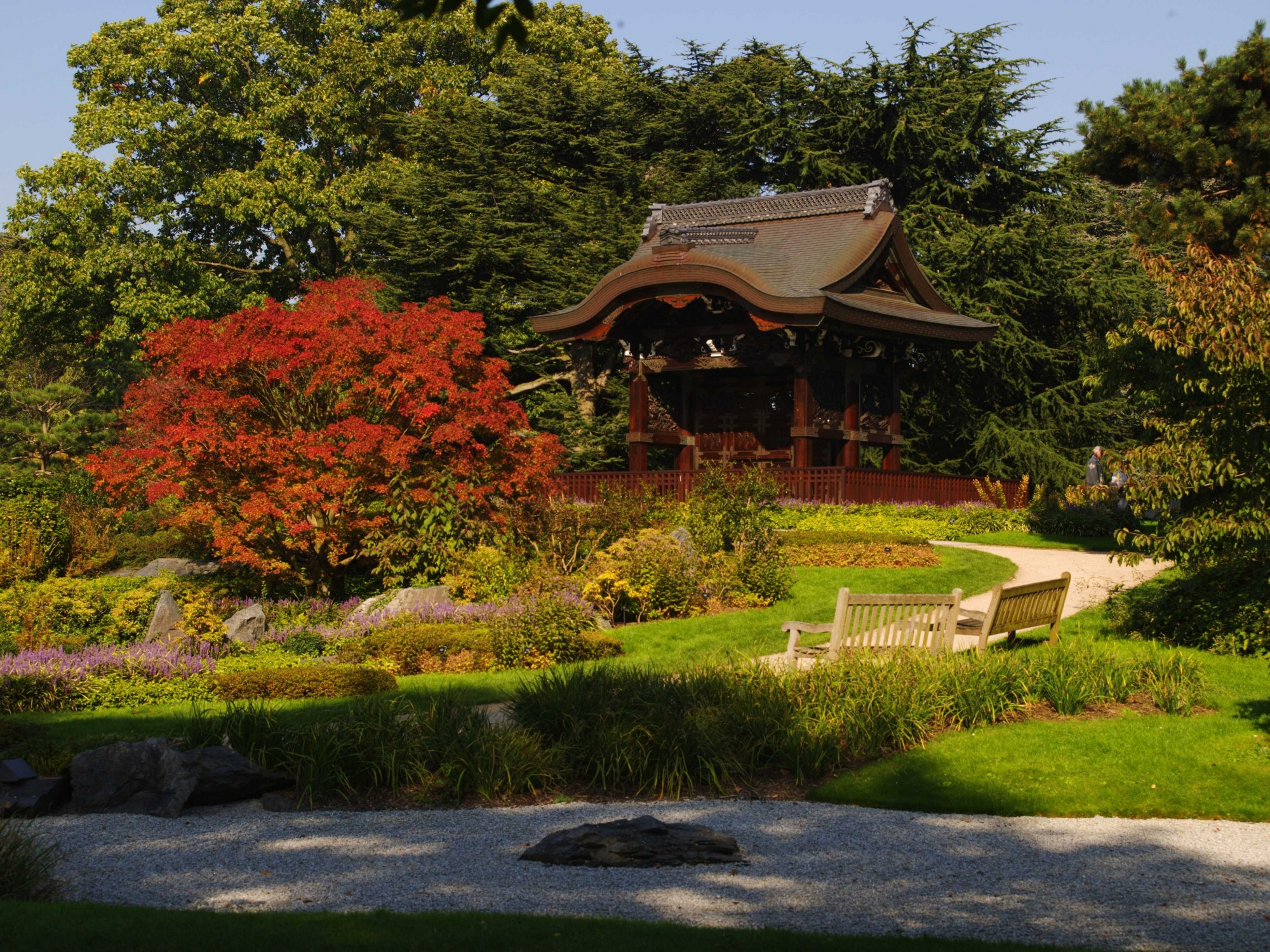 Japanese structure at kew in autumn