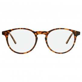 Tortoiseshell INCA Classics by Inca Glasses on curated-crowd.com
