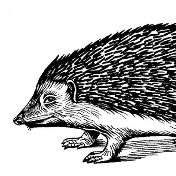 The Hedgehog Review icon